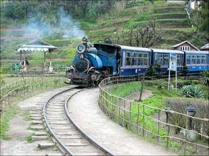 33_Toy-train-Darjeeling